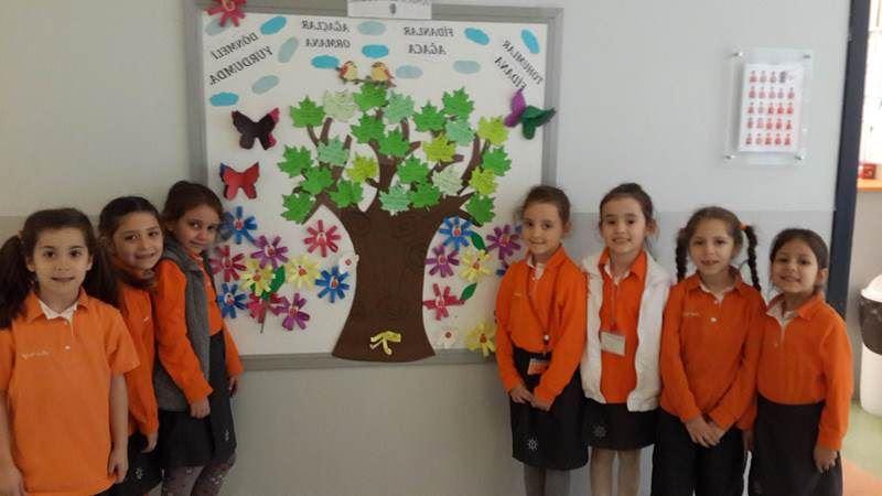 Orman Haftası Pano çalışması Rota Koleji