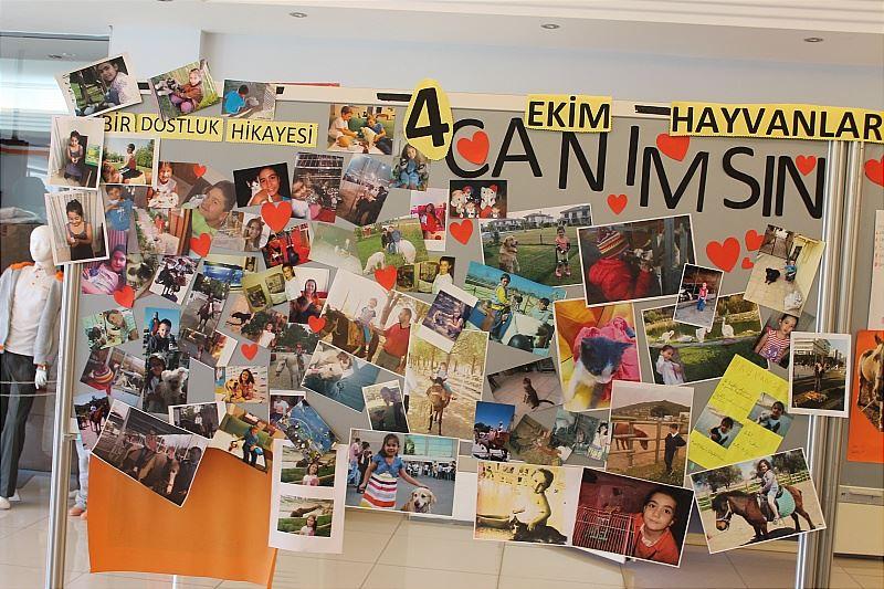 4 Ekim Hayvanları Koruma Günü Rota Koleji